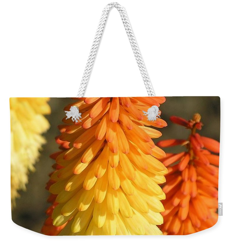 Orange Weekender Tote Bag featuring the photograph Orange And Gold Flower by Diane Greco-Lesser