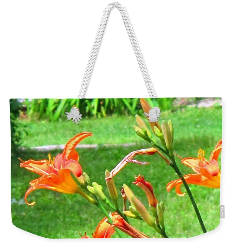 Lilly Weekender Tote Bag featuring the photograph Orange And Green by Ian MacDonald