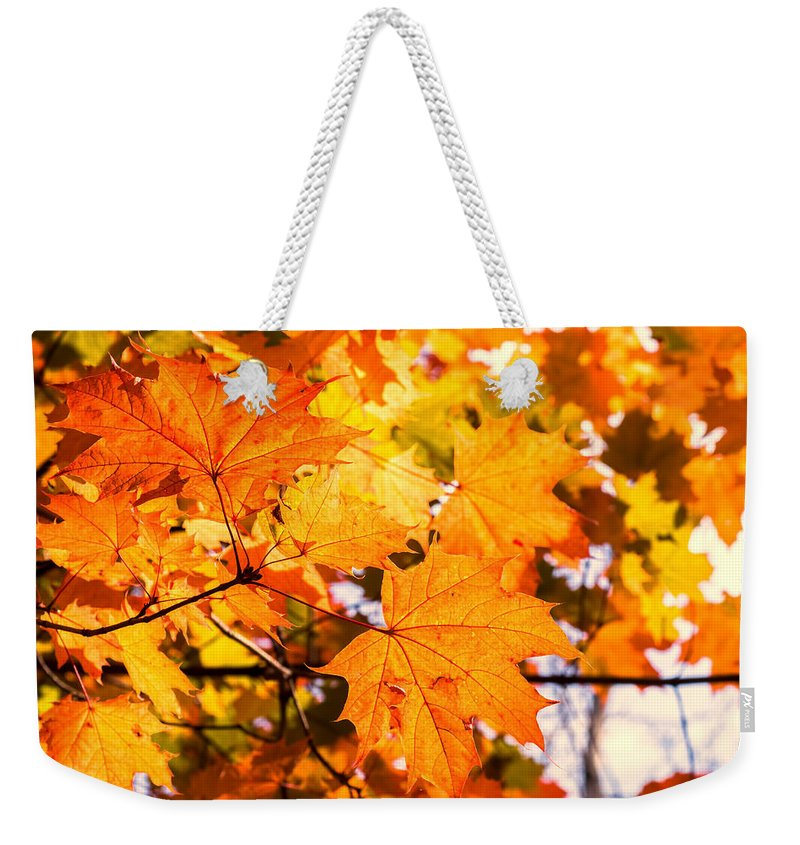 Orange Leaves Weekender Tote Bag featuring the photograph Fall Of Orange Leaves by John Williams