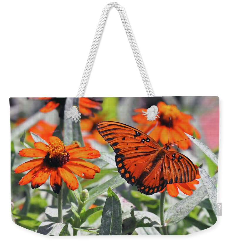 Nature Weekender Tote Bag featuring the photograph Orange Butterfly by Kay Lovingood