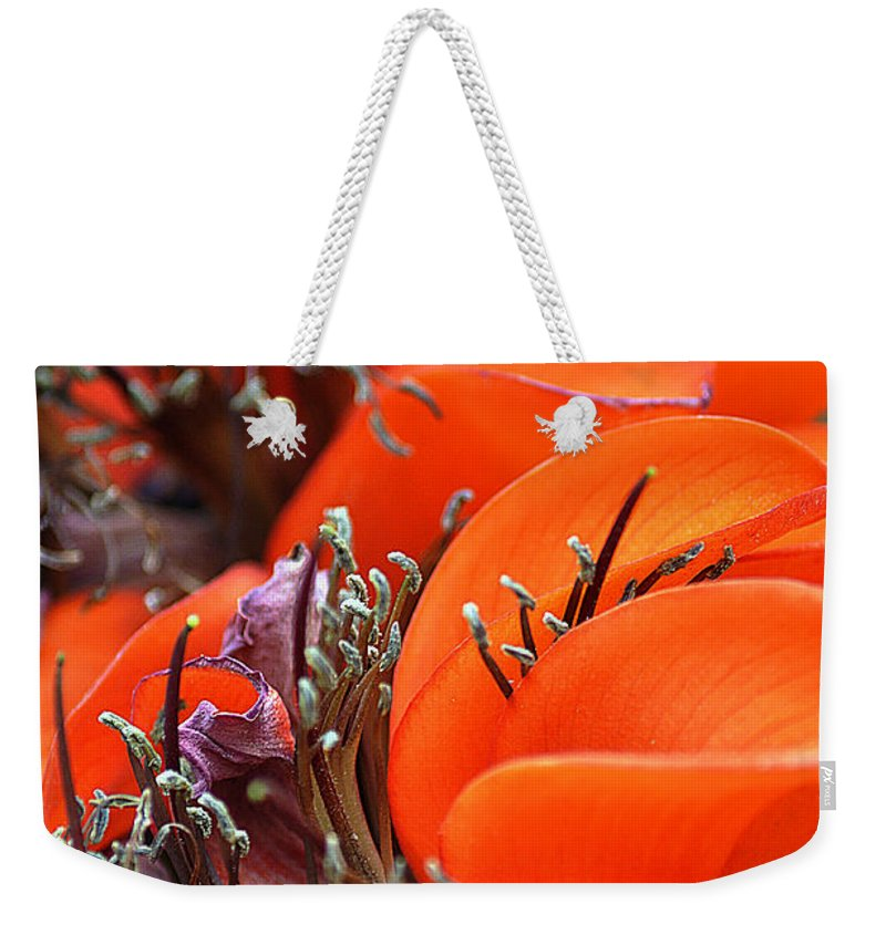 Clay Weekender Tote Bag featuring the photograph Orange by Clayton Bruster