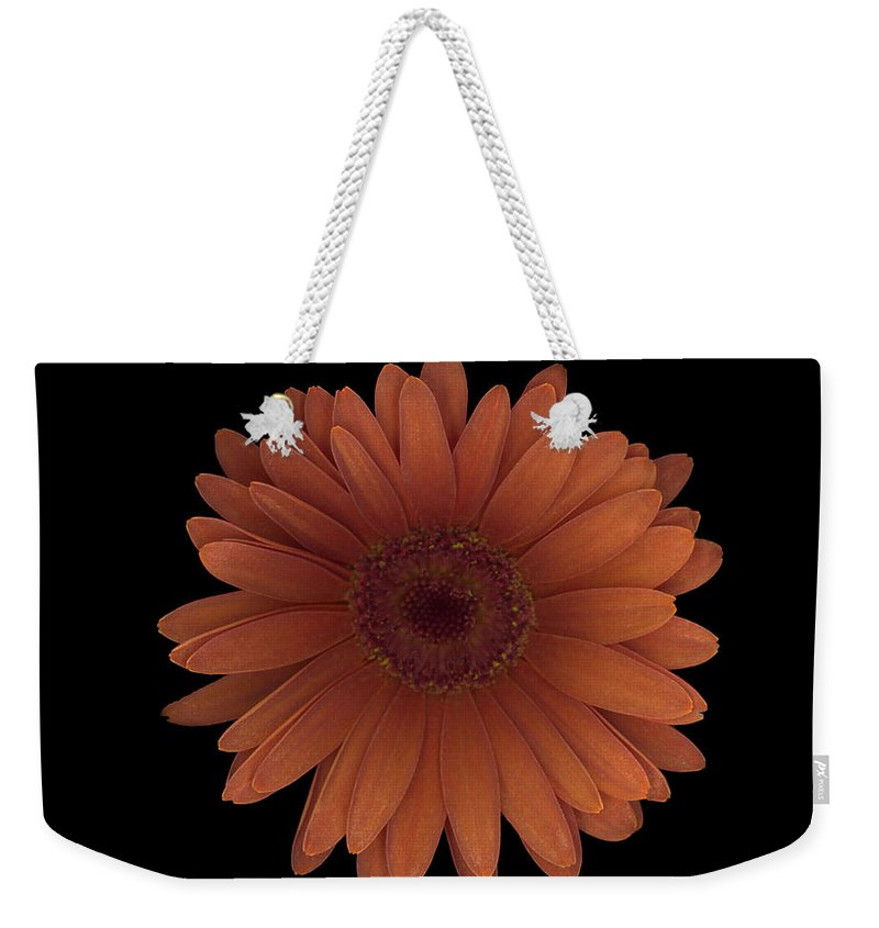Orange Weekender Tote Bag featuring the photograph Orange Daisy Front by Heather Kirk