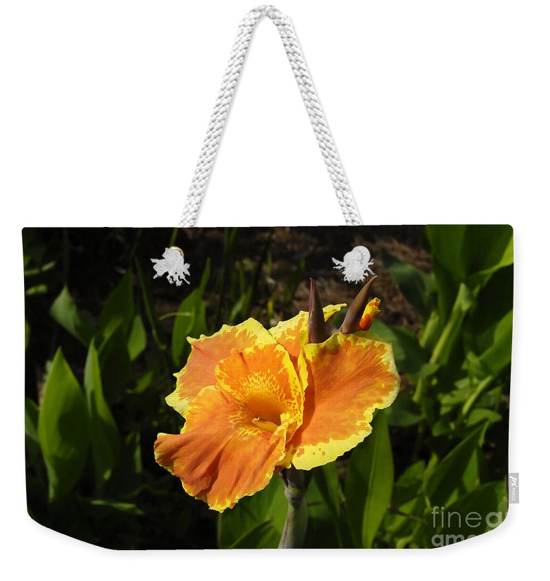 Flower Weekender Tote Bag featuring the photograph Orange Flower by David Lee Thompson