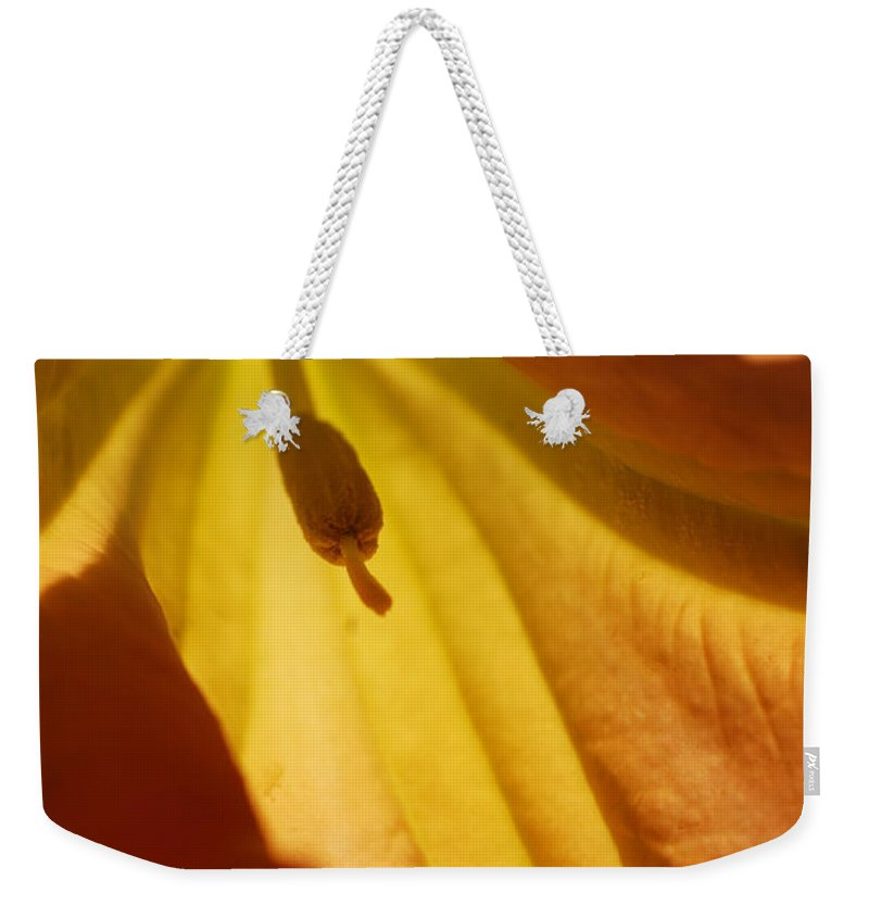 Botanical Weekender Tote Bag featuring the photograph Orange Flower Stamen by Jill Reger