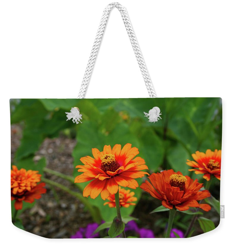 Flowers Weekender Tote Bag featuring the photograph Orange Flowers by Cathy Harper
