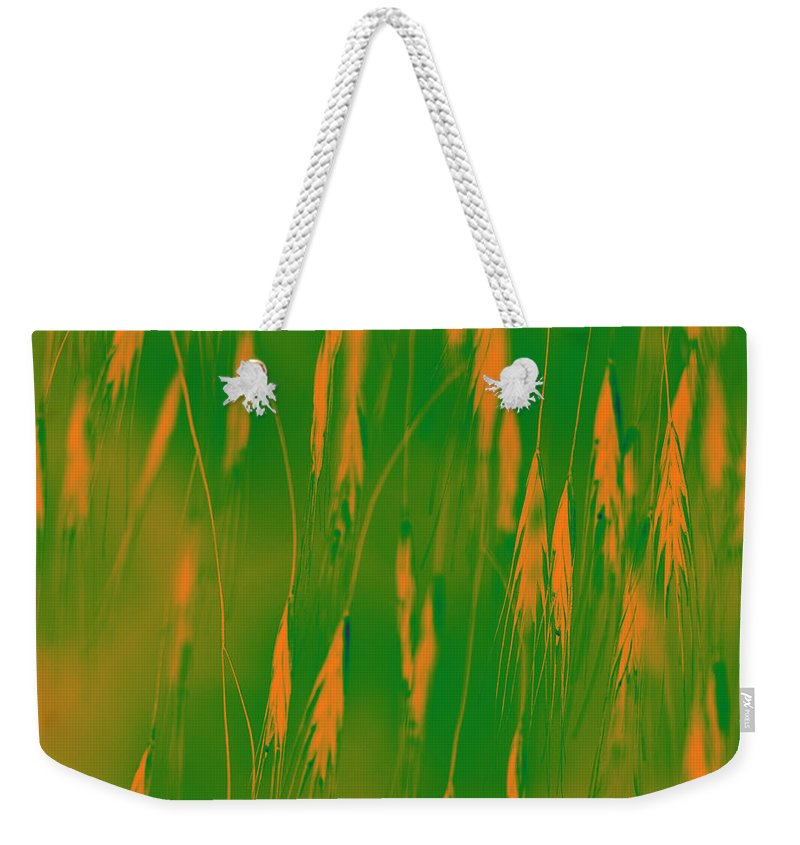 Grass Weekender Tote Bag featuring the photograph Orange Grass Spikes by Heiko Koehrer-Wagner