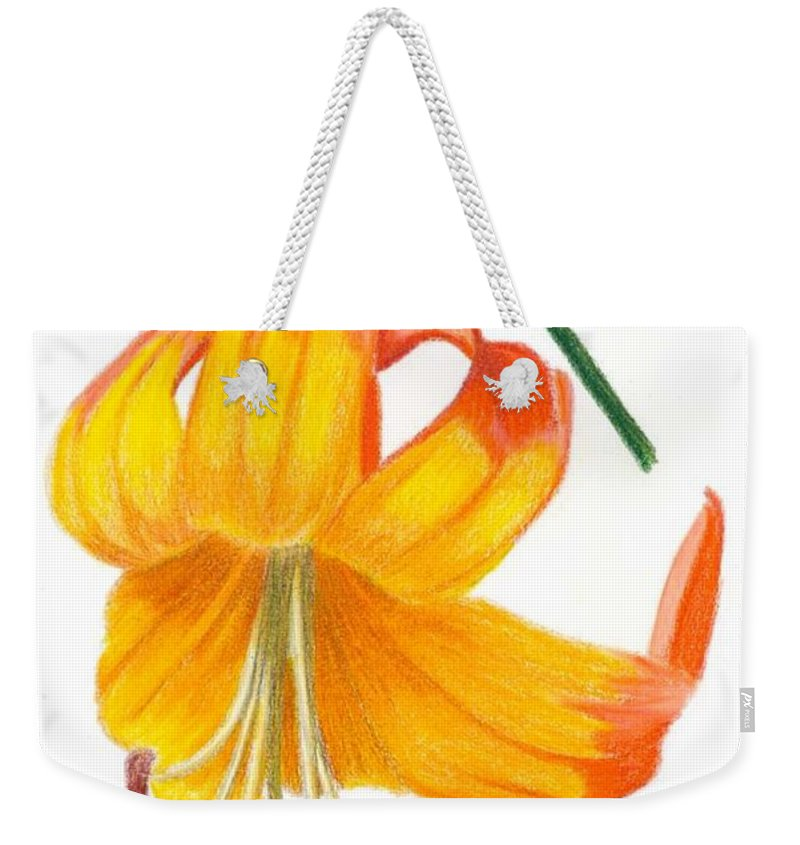 Lily Weekender Tote Bag featuring the drawing Orange Lily No 3 by Christina Beck