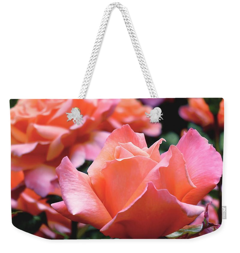Rose Weekender Tote Bag featuring the photograph Orange-pink Roses by Rona Black
