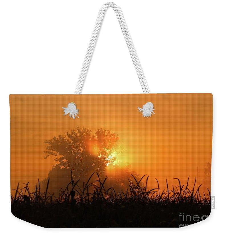 Orange Sky Rising Weekender Tote Bag featuring the photograph Orange Sky Rising by Rachel Cohen