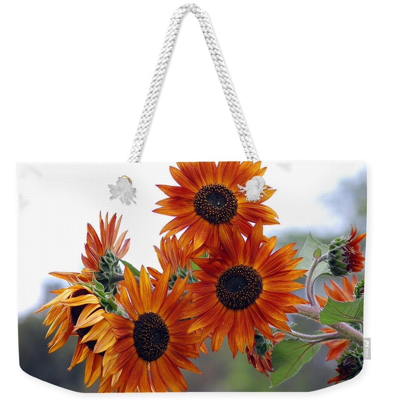 Sunflower Weekender Tote Bag featuring the photograph Orange Sunflower 1 by Amy Fose