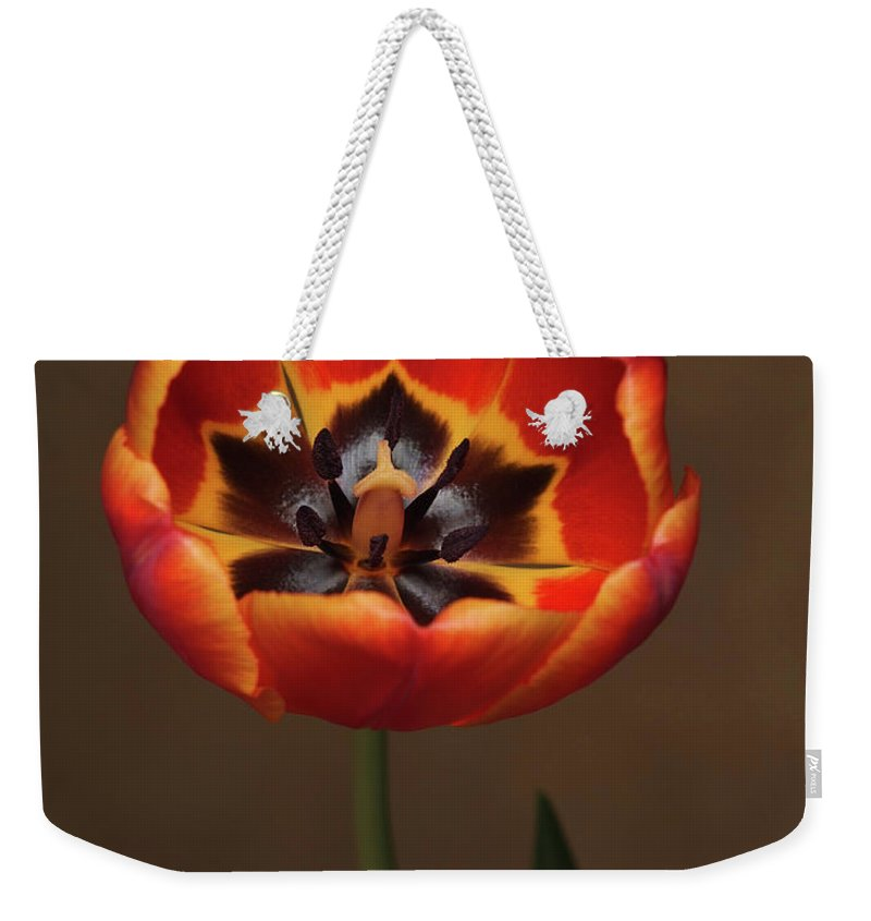 Flowers Weekender Tote Bag featuring the photograph Orange Tulip by Dorothy Lee