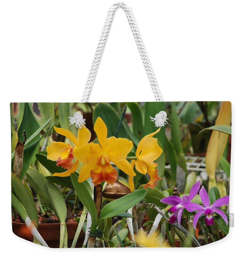 Orange Weekender Tote Bag featuring the photograph Orangepurple Orchids by Rob Hans