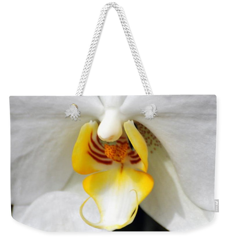Flower Weekender Tote Bag featuring the photograph Orchid 23 by Marty Koch