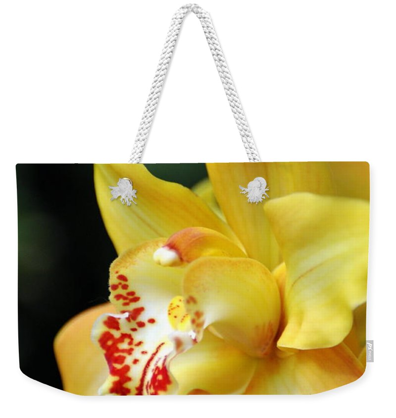 Orchid Weekender Tote Bag featuring the photograph Orchid 24 by Marty Koch