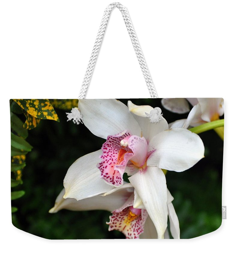 Flower Weekender Tote Bag featuring the photograph Orchid 29 by Marty Koch