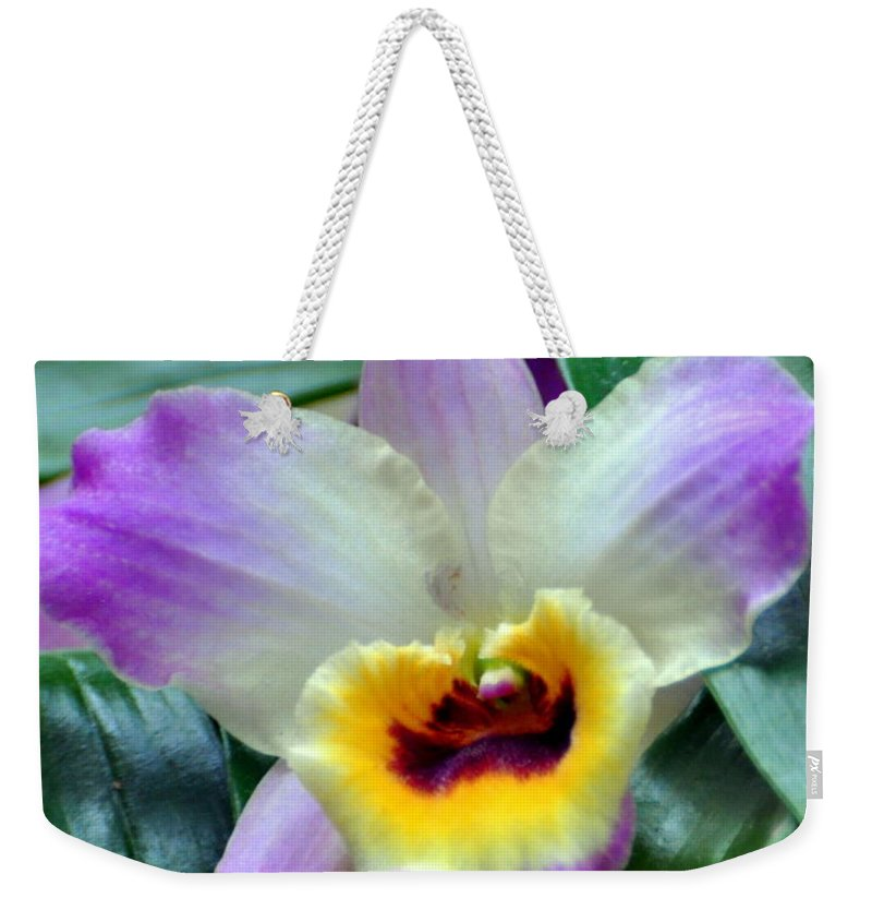 Orchid Weekender Tote Bag featuring the photograph Orchid 34 by Marty Koch