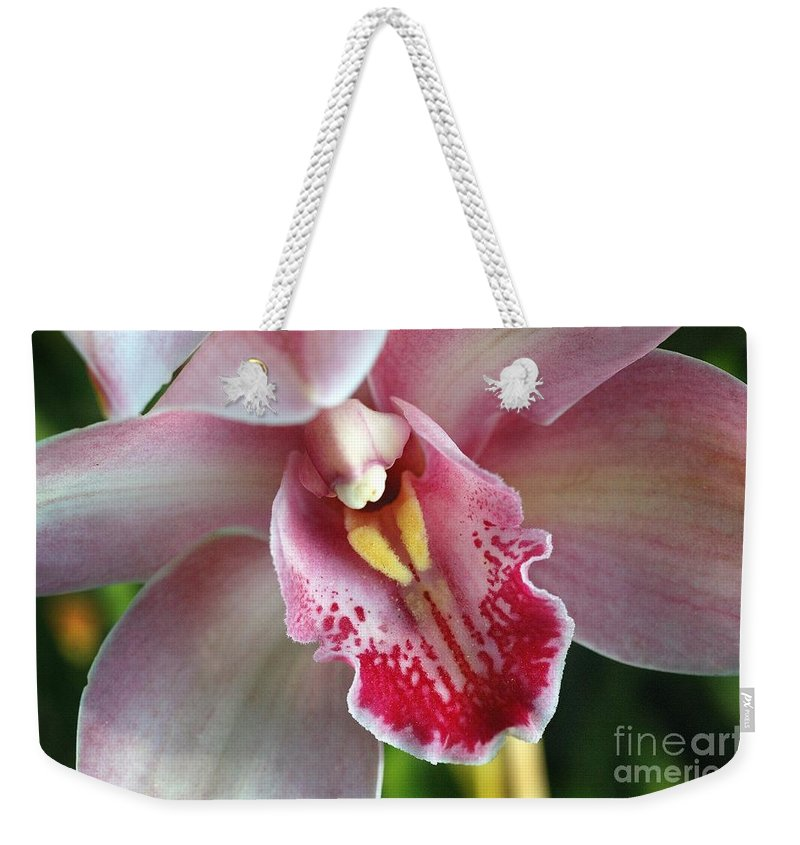 Flowers Weekender Tote Bag featuring the photograph Orchid Dust by Norman Andrus