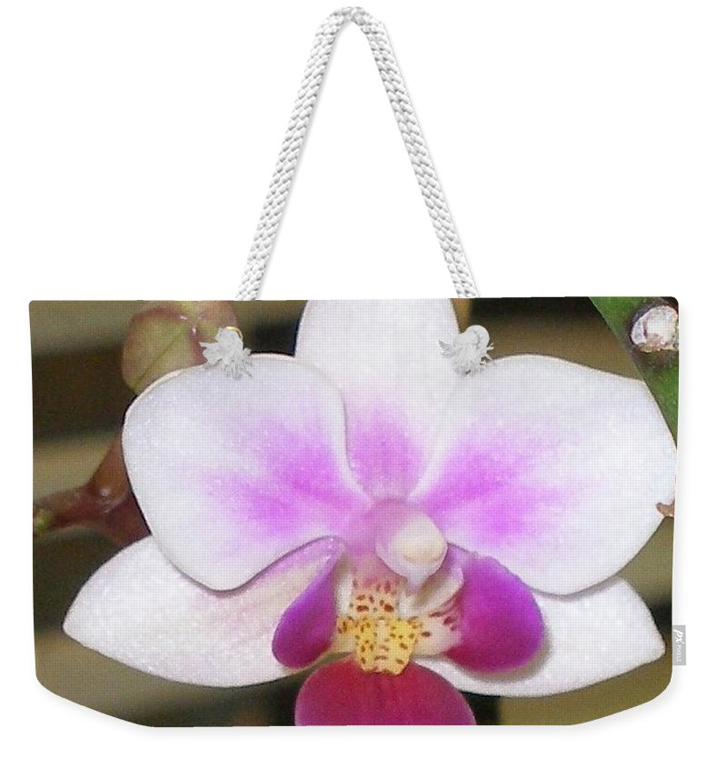Purple Weekender Tote Bag featuring the photograph Orchid Explosion by Maria Bonnier-Perez