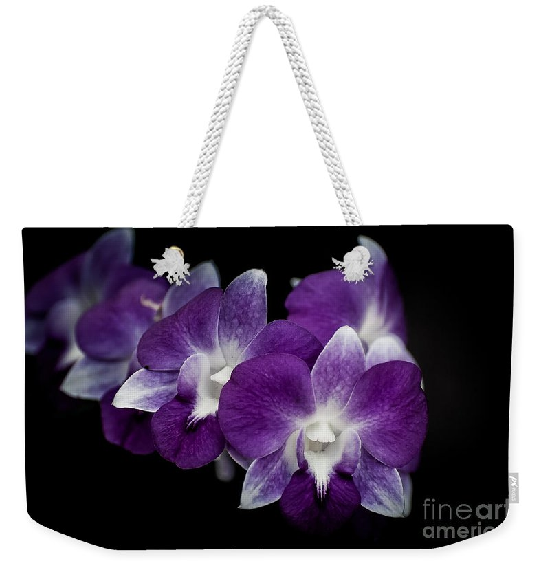 Punta Cana Weekender Tote Bag featuring the photograph Orchids by Bianca Nadeau