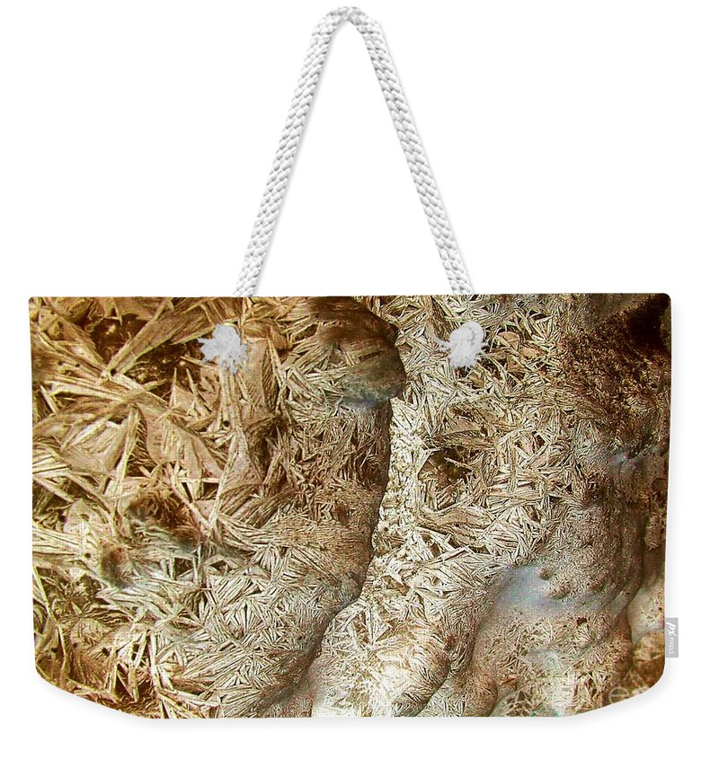 Oriented Strands Weekender Tote Bag featuring the photograph Oriented Strands by Ron Bissett