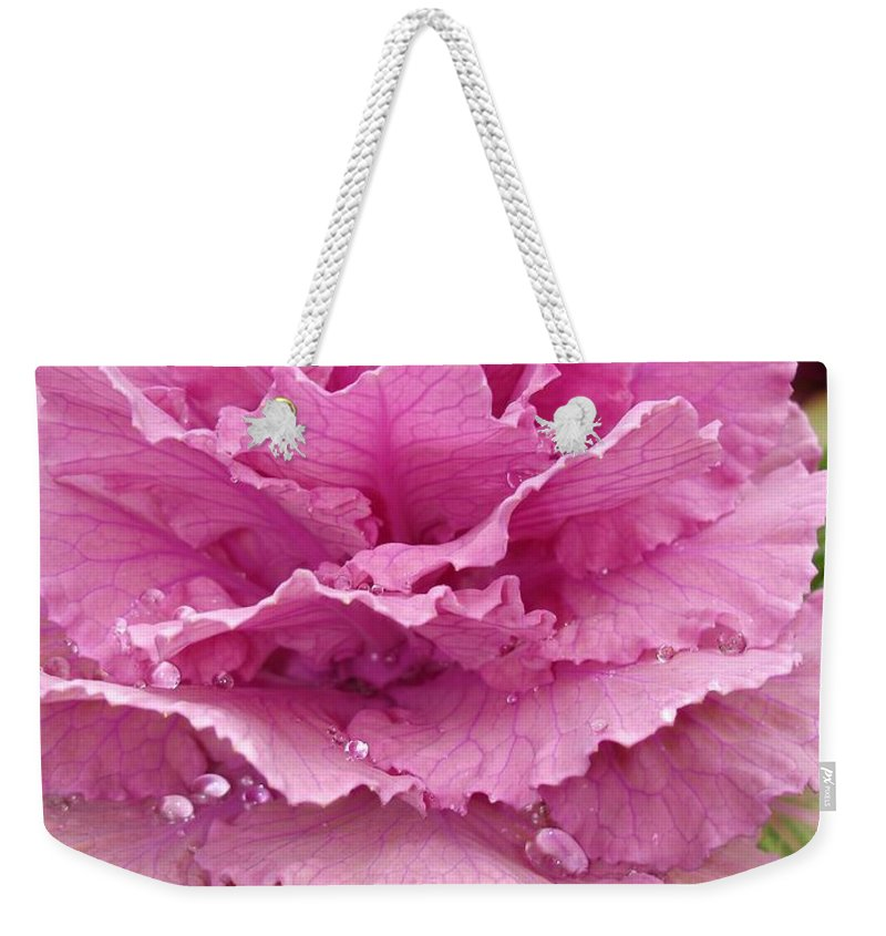 Ornamental Cabbage Weekender Tote Bag featuring the photograph Ornamental Cabbage by Carol Groenen