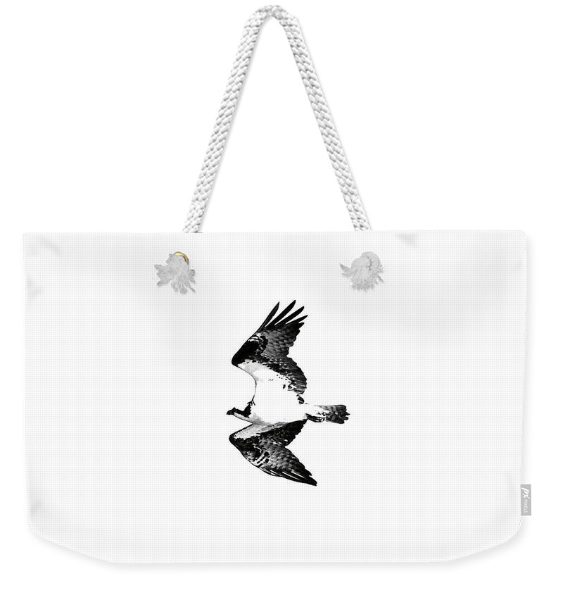 Osprey Weekender Tote Bag featuring the photograph Osprey Flight by Rachel Morrison