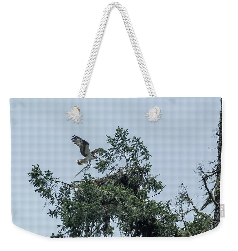 Osprey Weekender Tote Bag featuring the photograph Osprey Reinforcing Its Nest 2017 by Belinda Greb