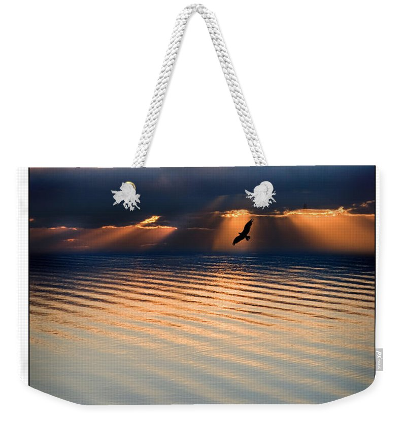 Osprey Weekender Tote Bag featuring the photograph Ospreys by Mal Bray