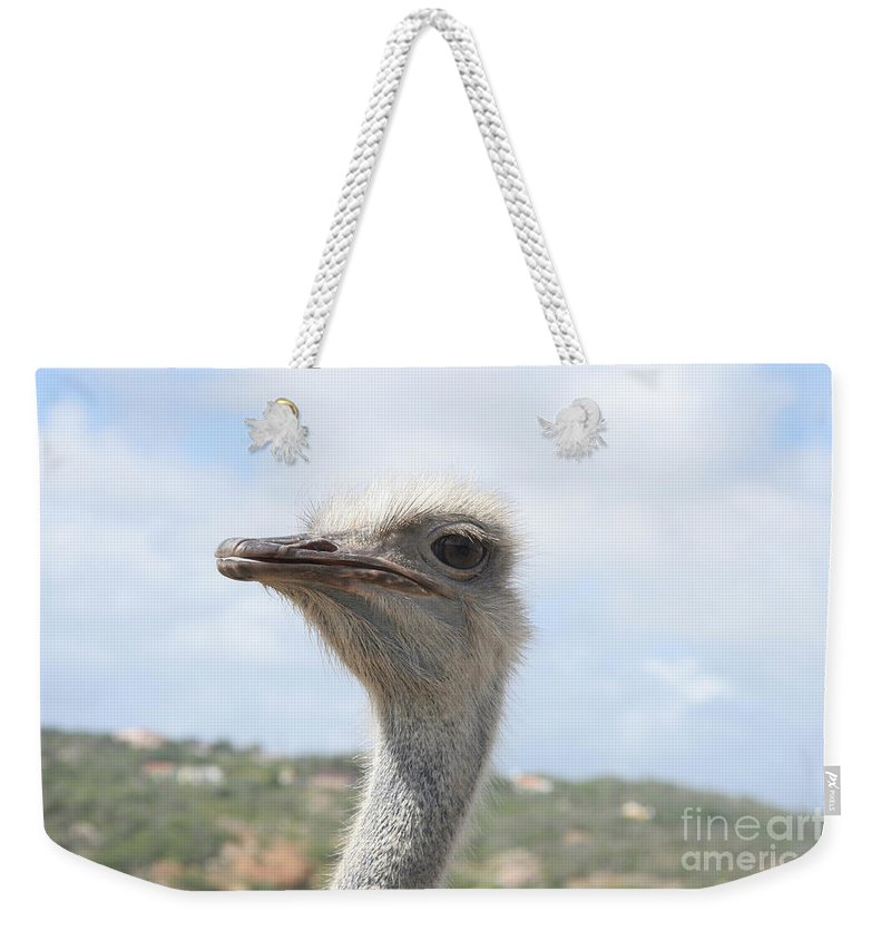 Ostrich Weekender Tote Bag featuring the photograph Ostrich Head II by Thomas Marchessault