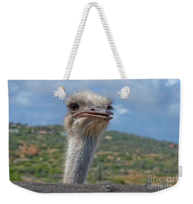 Ostrich Weekender Tote Bag featuring the photograph Ostrich Head by Thomas Marchessault