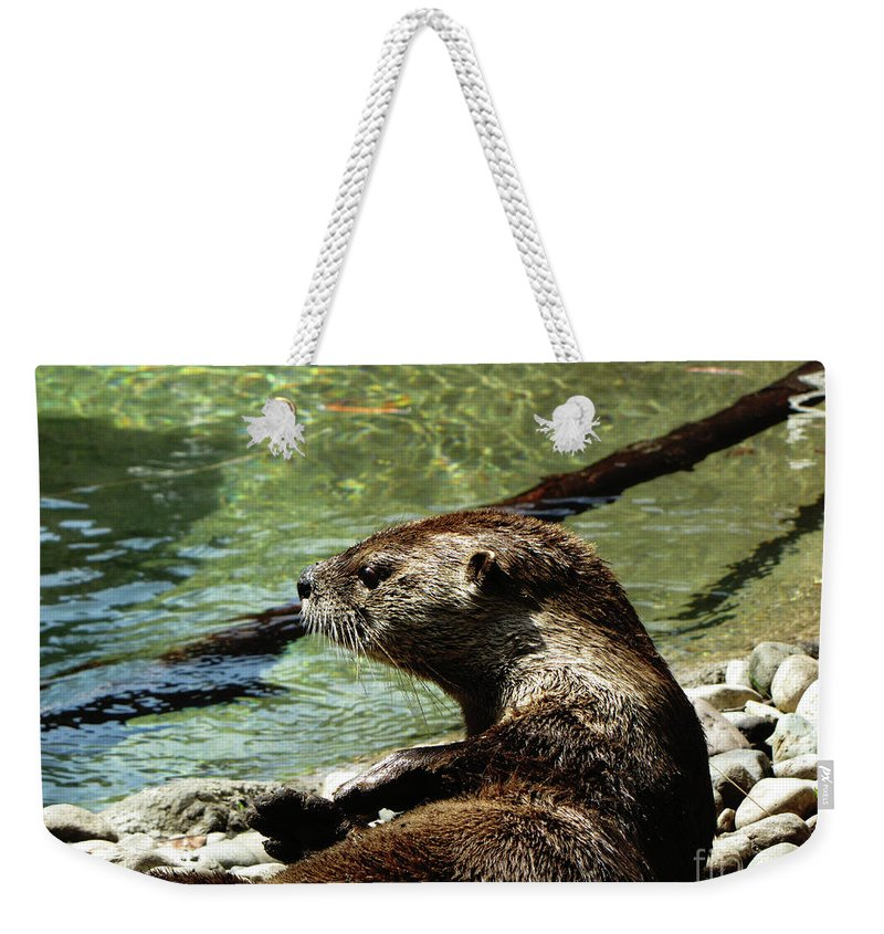 Otter Weekender Tote Bag featuring the photograph Otter by September Stone