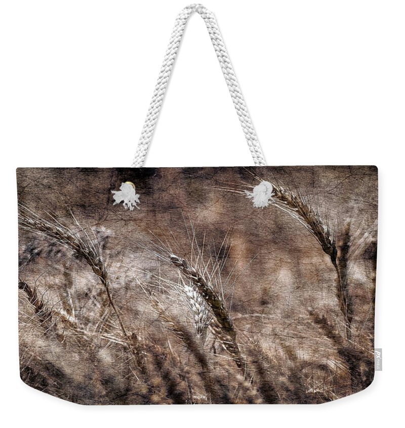 Art On Canvas Weekender Tote Bag featuring the photograph Our Daily Bread by Garett Gabriel