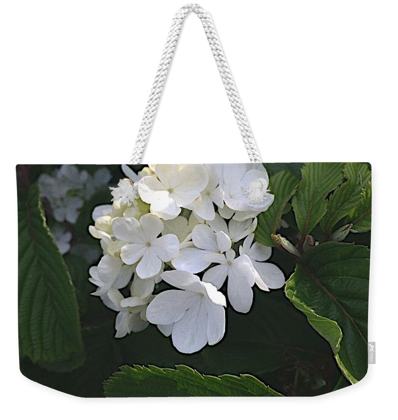Blooms Weekender Tote Bag featuring the photograph Out In The Wilds by Joseph Yarbrough