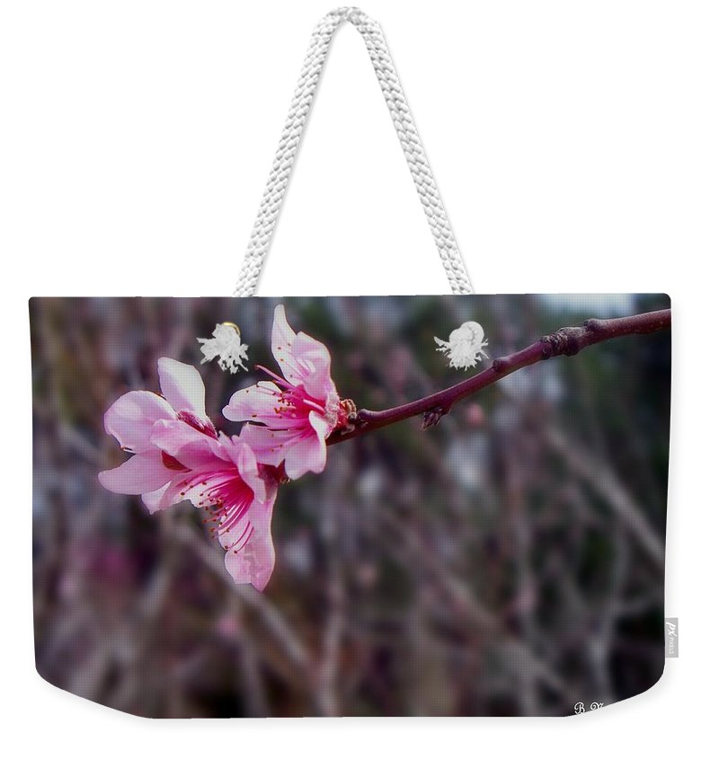Peach Weekender Tote Bag featuring the photograph Out On A Limb by Betty Northcutt