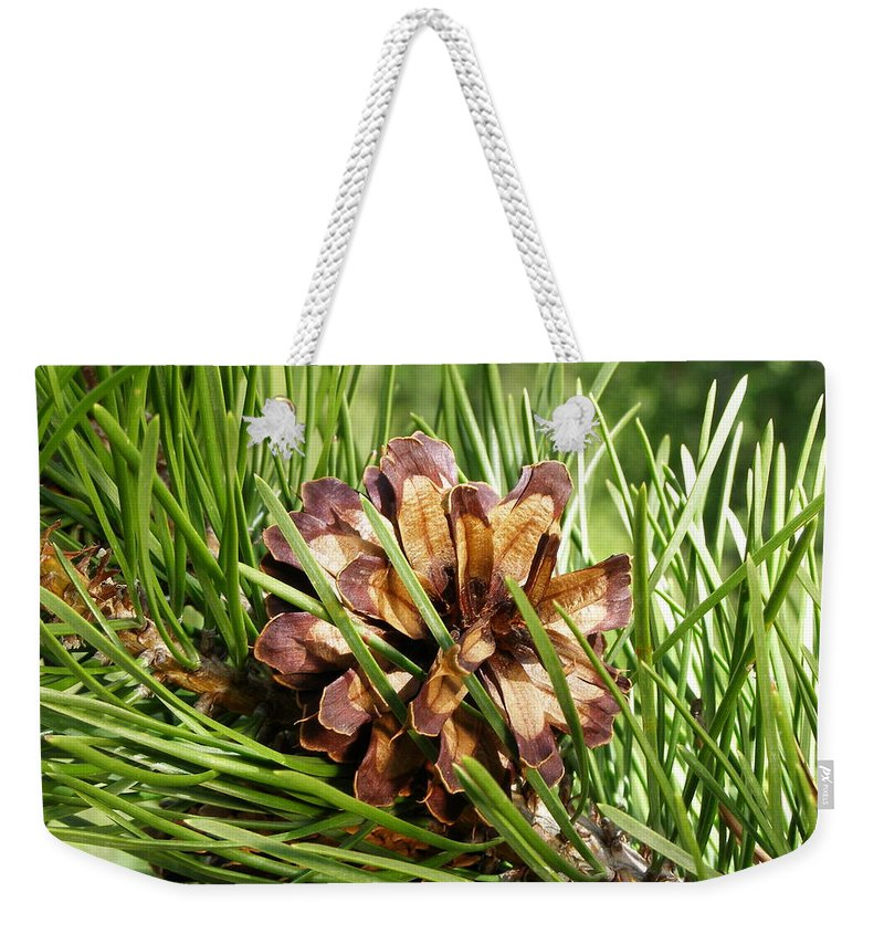 Tree Weekender Tote Bag featuring the photograph Out On A Limb by DeeLon Merritt
