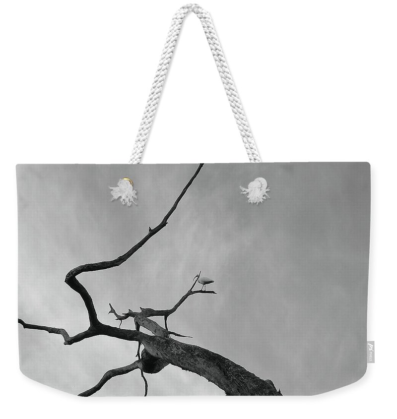 Birds Weekender Tote Bag featuring the photograph Out On A Limb by Robert Meanor