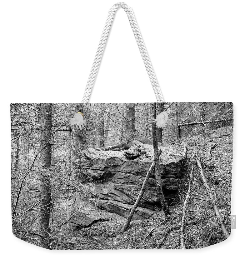 Weekender Tote Bag featuring the photograph Outcrop, Woods, Dipton Burn by Iain Duncan