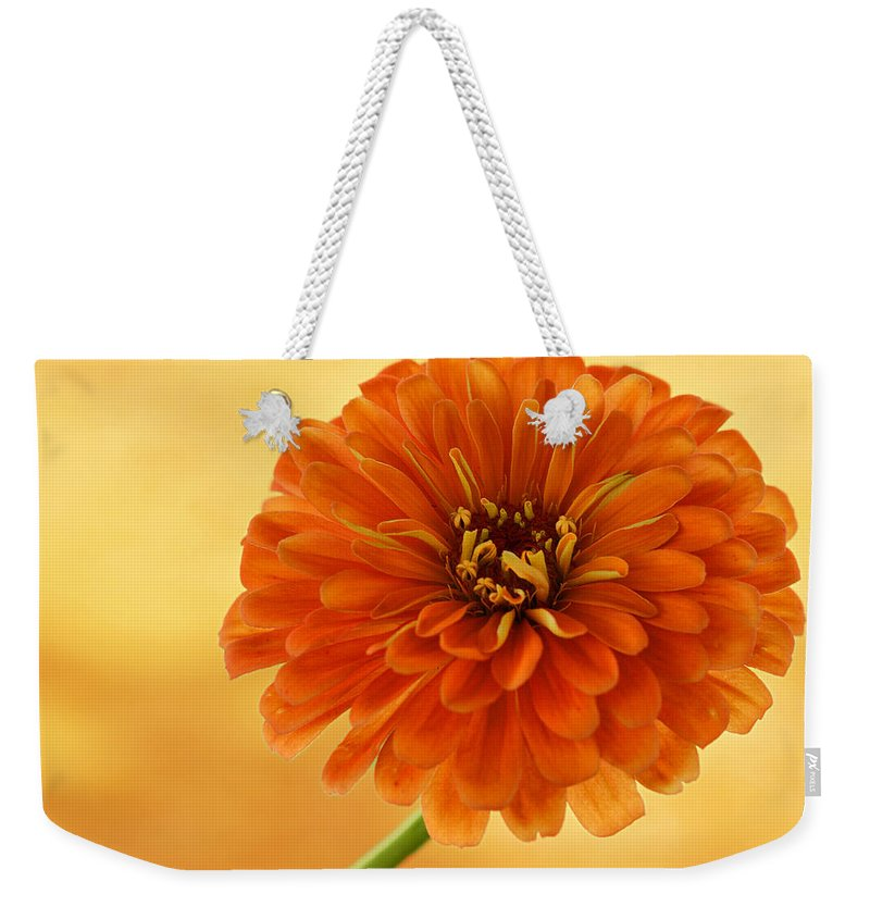 Flower Weekender Tote Bag featuring the photograph Outrageous Orange by Sandy Keeton