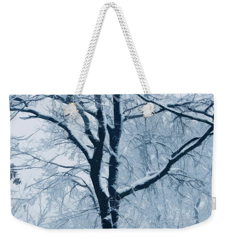 Trees Weekender Tote Bag featuring the photograph Outside My Window by Linda Sannuti