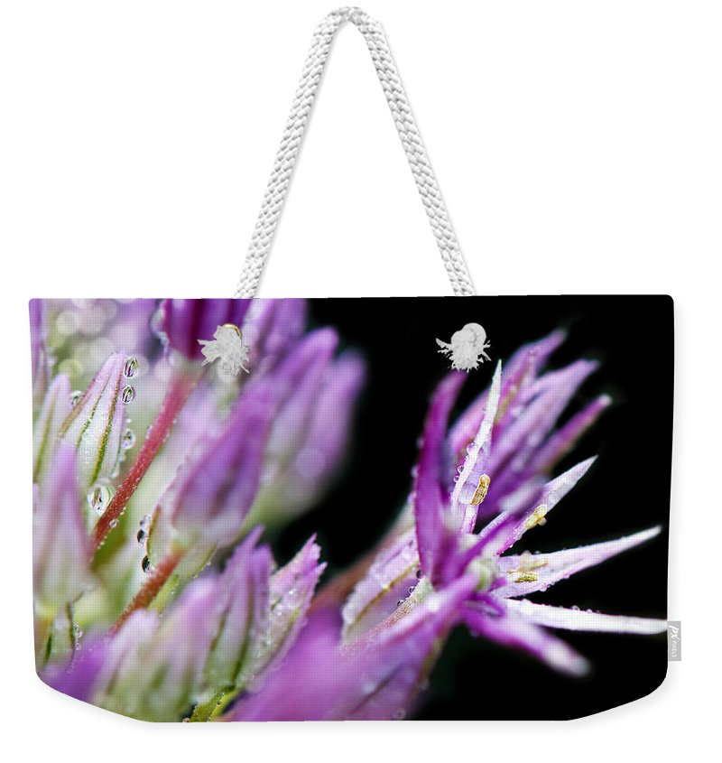 Reach Weekender Tote Bag featuring the photograph Outstretched by Lisa Knechtel