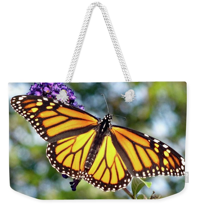 Monarch Weekender Tote Bag featuring the photograph Outstretched Monarch by Cindy Treger