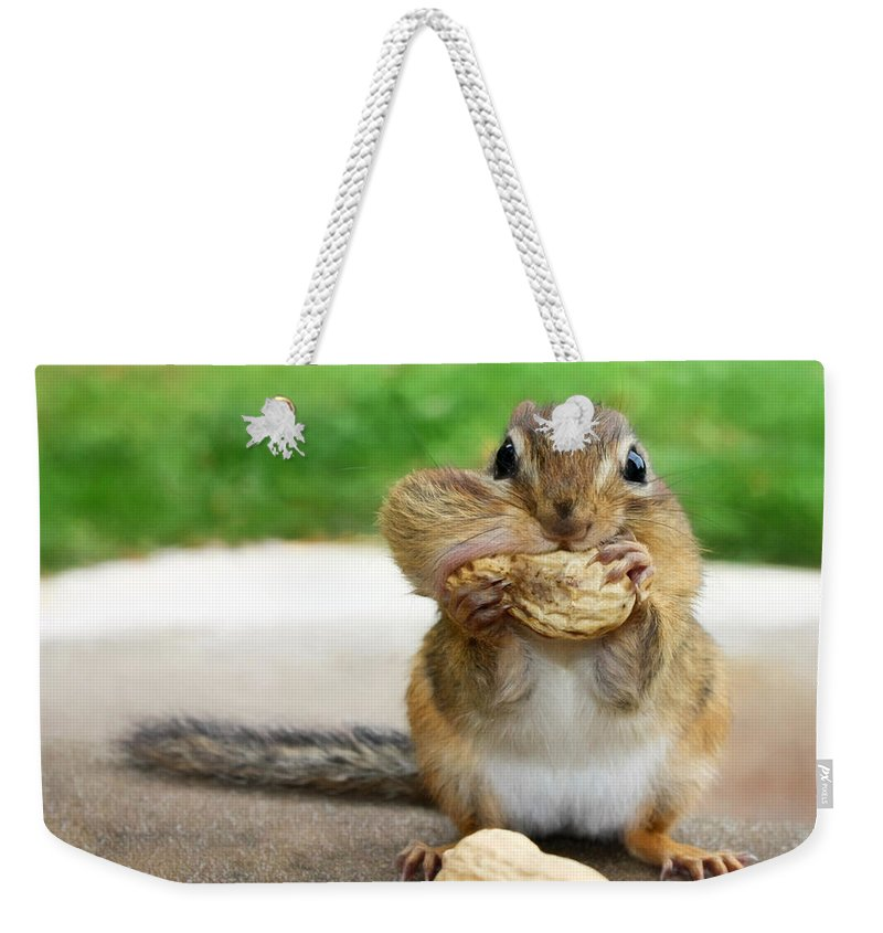 Chipmunks Weekender Tote Bag featuring the photograph Overstuffed by Lori Deiter