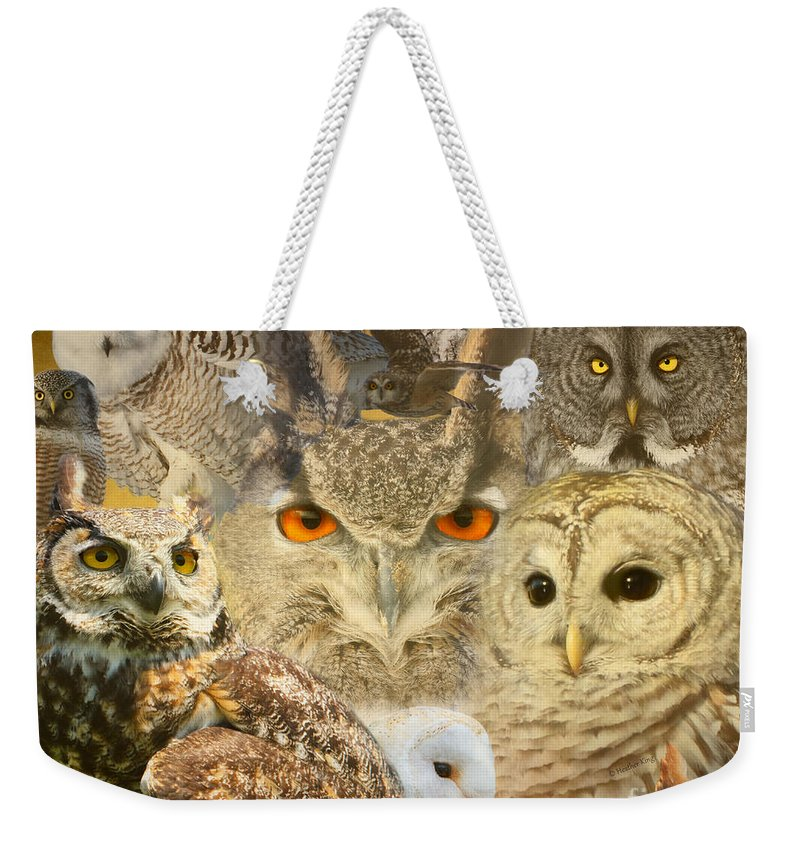 Owls Weekender Tote Bag featuring the photograph Owl You Need Is Love by Heather King