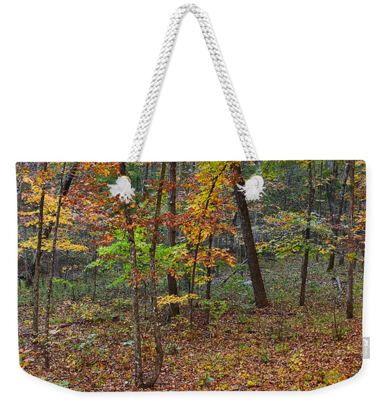 Fall Foliage Weekender Tote Bag featuring the photograph Ozark Forest In Fall 1 by Greg Matchick