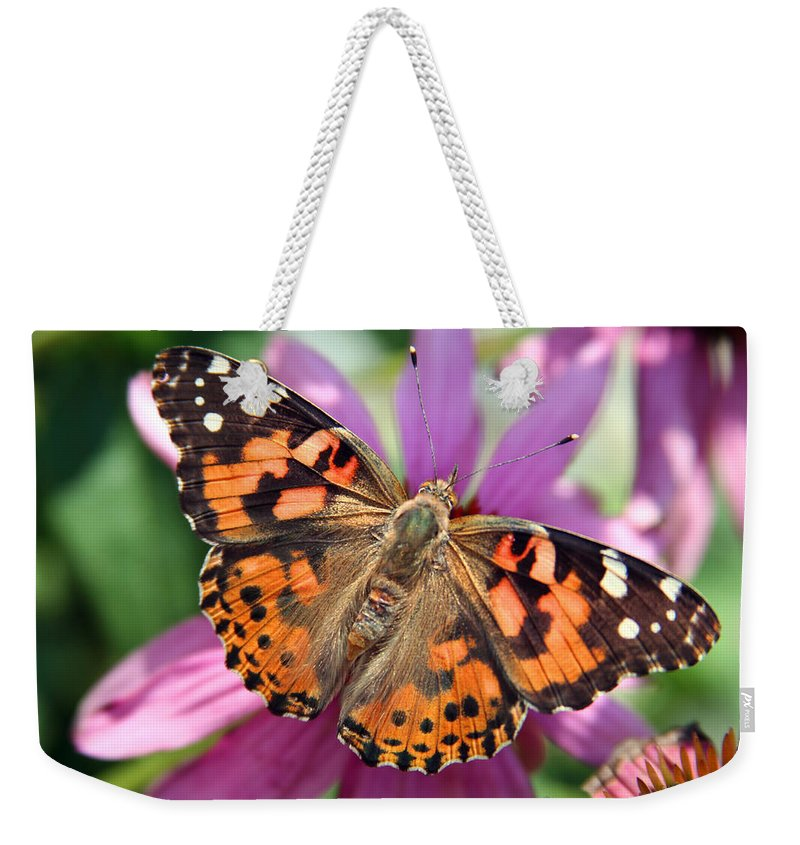 Painted Lady Weekender Tote Bag featuring the photograph Painted Lady Butterfly by Margie Wildblood