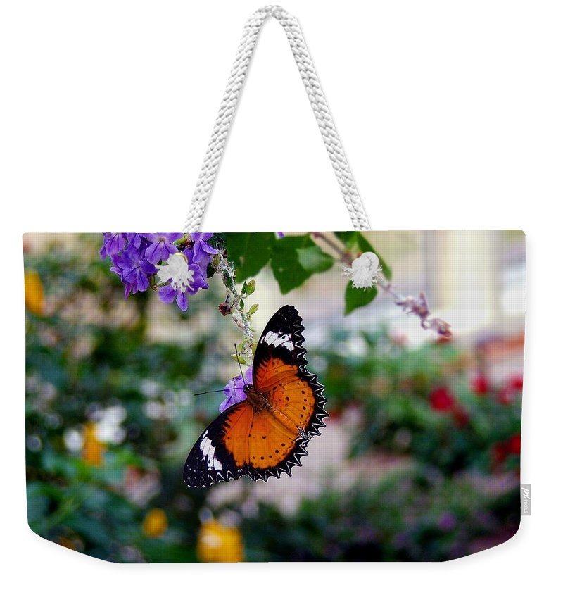 Butterfly Weekender Tote Bag featuring the photograph Painted Lady by Robert Meanor