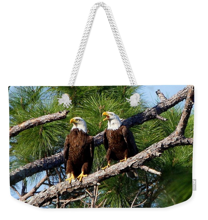 American Bald Eagle Weekender Tote Bag featuring the photograph Pair Of American Bald Eagle by Barbara Bowen