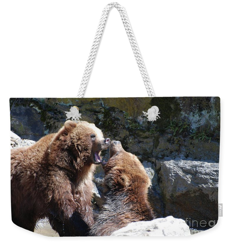 Grizzly Weekender Tote Bag featuring the photograph Pair Of Grizzly Bears Biting At Each Other by DejaVu Designs