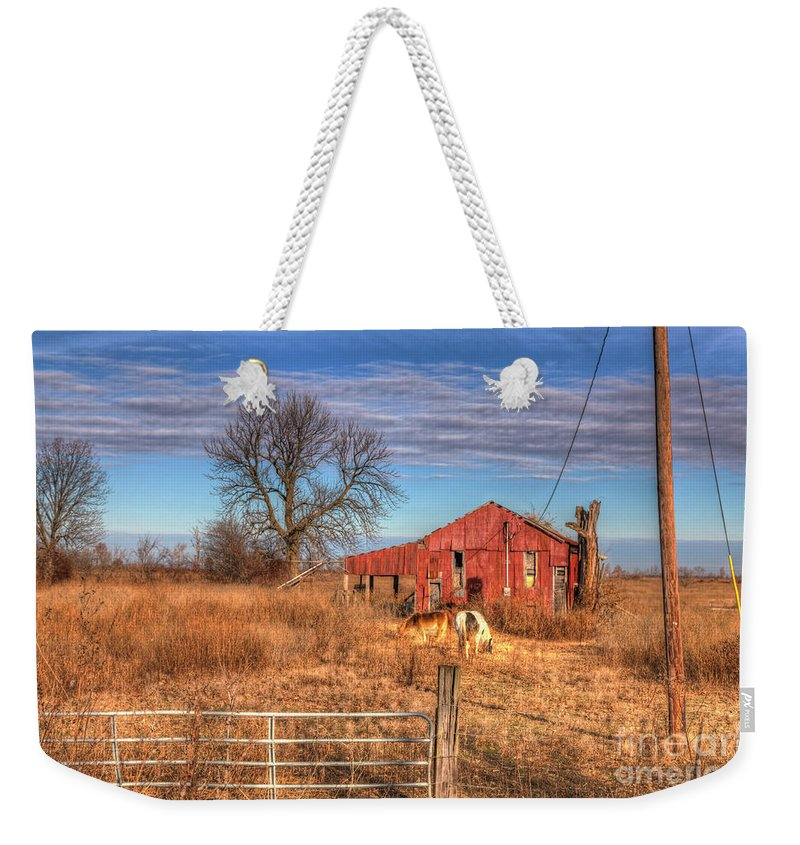 Travel Weekender Tote Bag featuring the photograph Pair Of Horses Grazing In A Field by Larry Braun