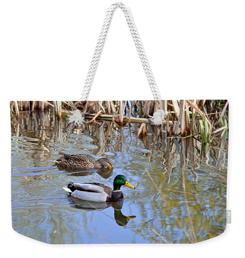 Motion Weekender Tote Bag featuring the photograph Pair Of Mallard Ducks by Rod Johnson